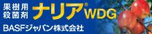 果樹用殺菌剤ナリアWDG BASFジャパン株式会社